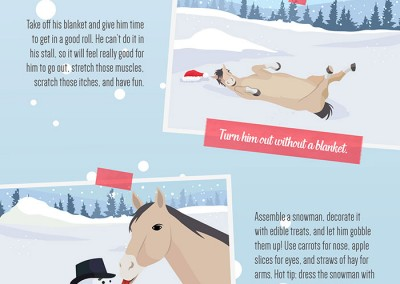 Horse Christmas Bonding