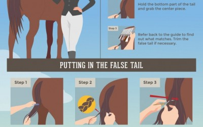 Horse Grooming Tips - A Step-by-Step Guide to Adding False Tails