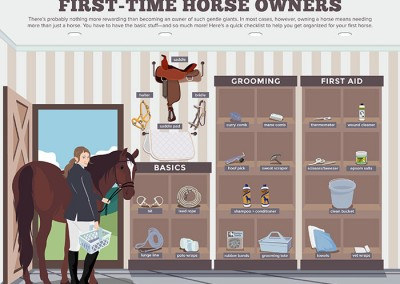 Melbourneseoservices.com Infographics - First Time Horse Owners