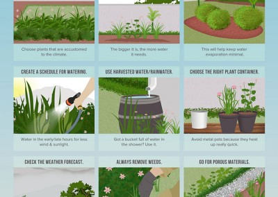 Melbourneseoservices.com Infographics - How to Save Water in Your Garden