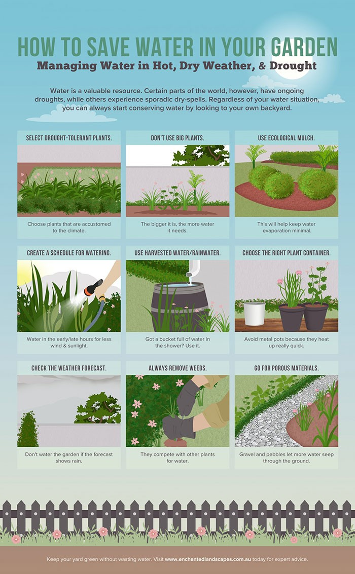 Hire an infographic designer from melbourne seo video for How to water a garden